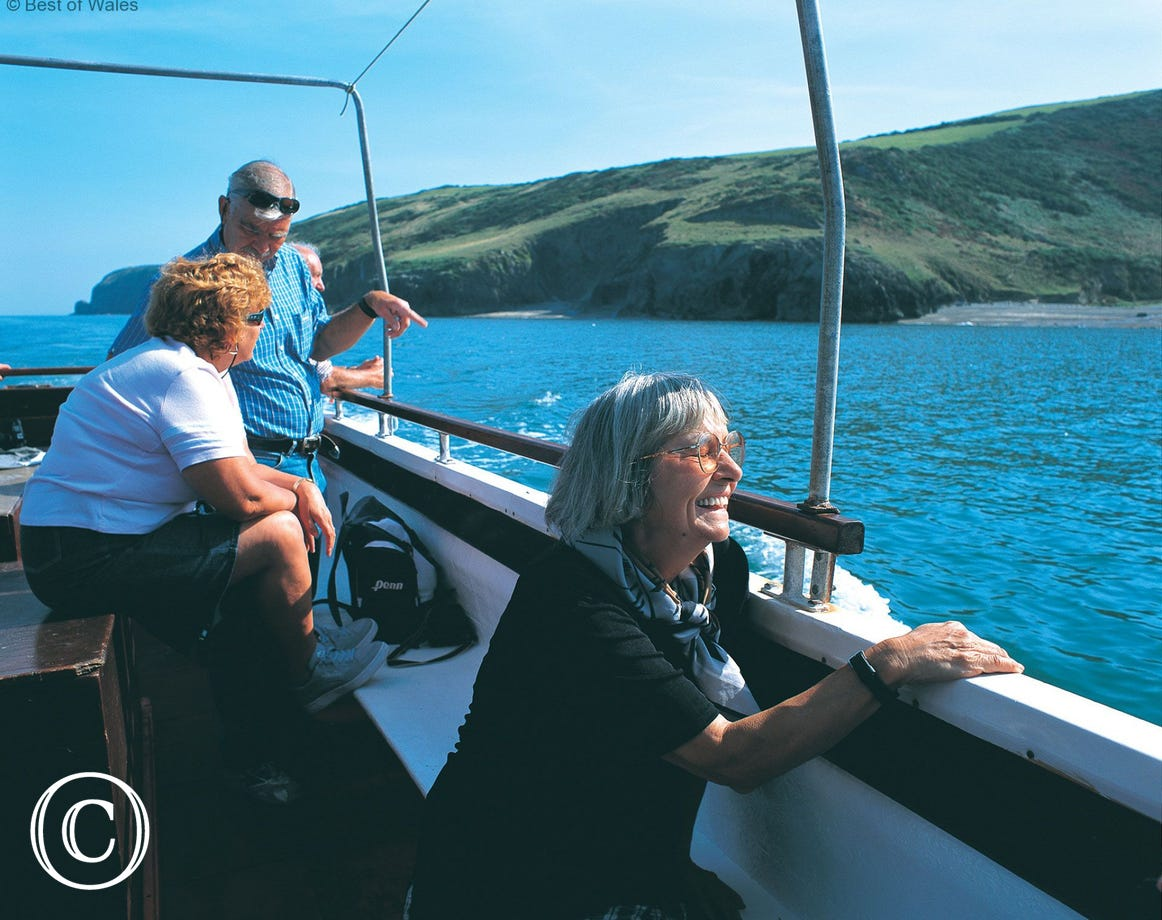 Dolphin watching trips available nearby