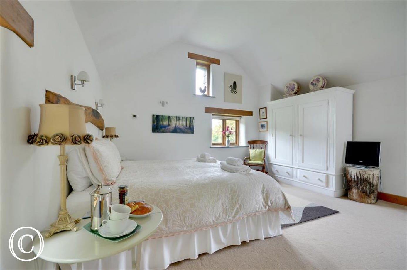 Charming bedroom with ample wardrobe space and TV