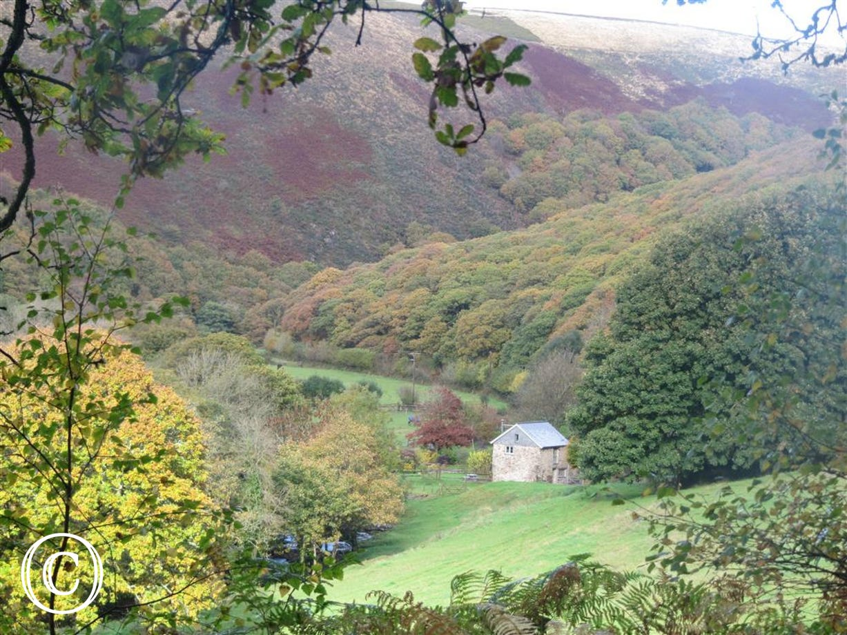 Tucked away in the beautiful Doone Valley - Keepers Cottage